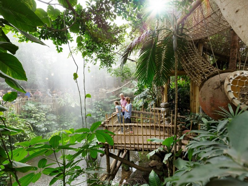 center-parcs-nature.jpg